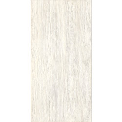 ZEUS MOOD WOOD Silk/ZNXP0R 300*600